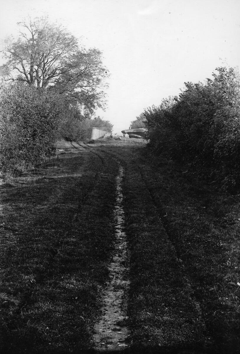 Dorstone, lane to Arthur's Stone