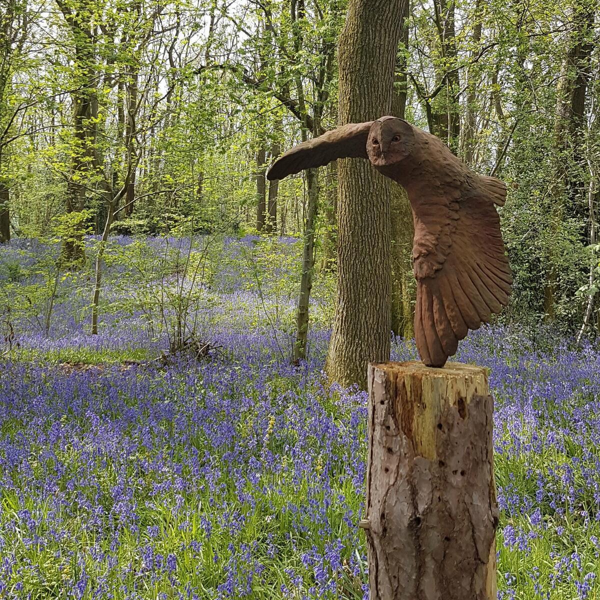 The owl sculpture amongst the bluebells