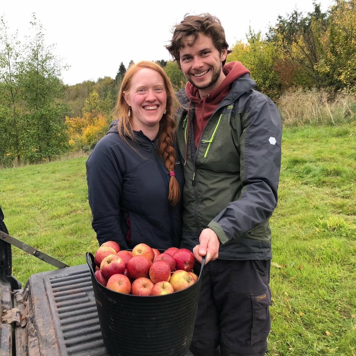 Volunteer 🍎  Help us bring in the apples at harvest time