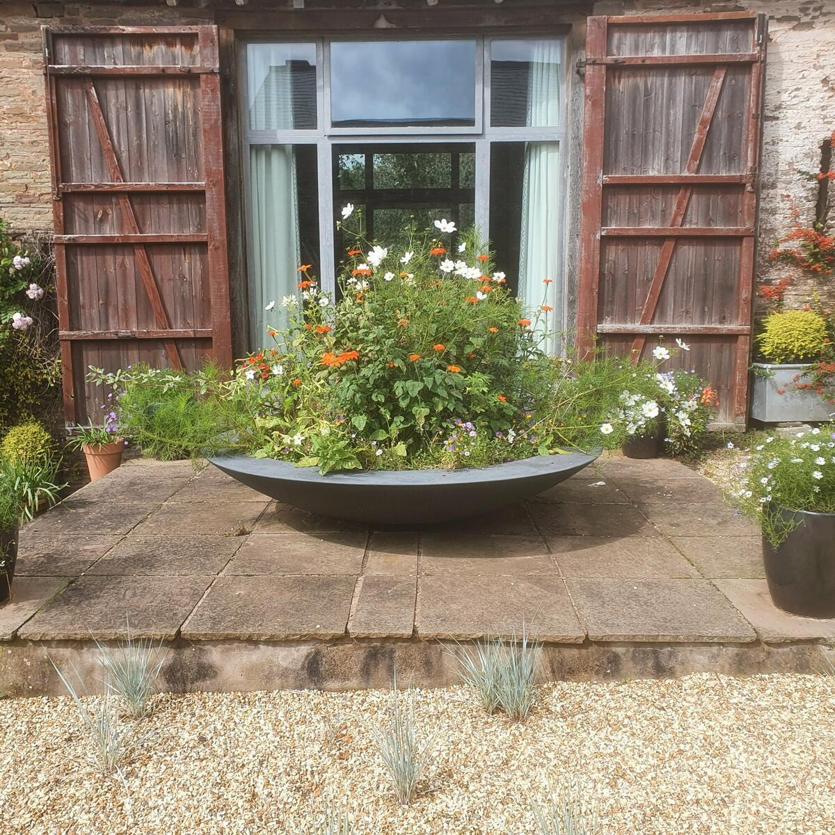 """""""Fying saucer"""" bowl in the dry garden"""