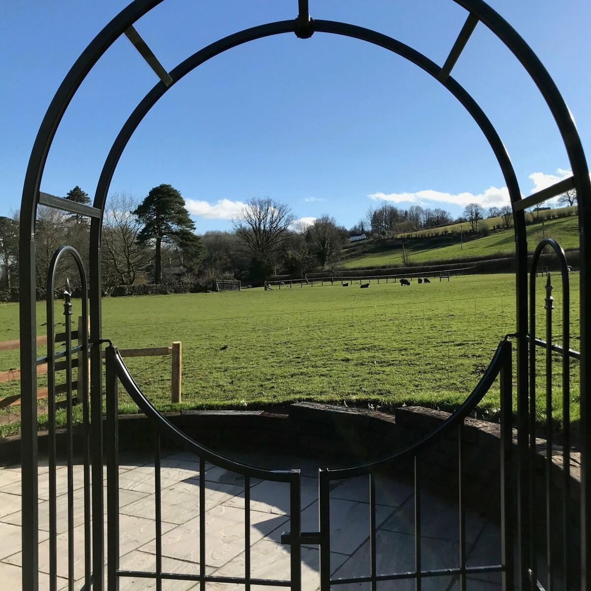 View out to the orchard