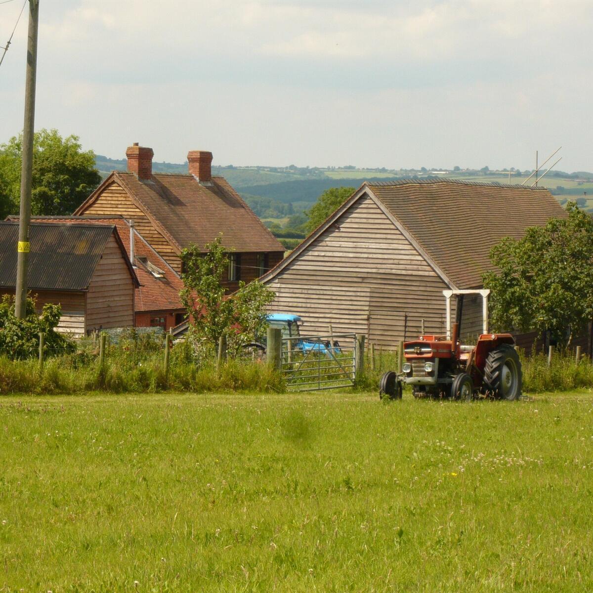Butford Farm