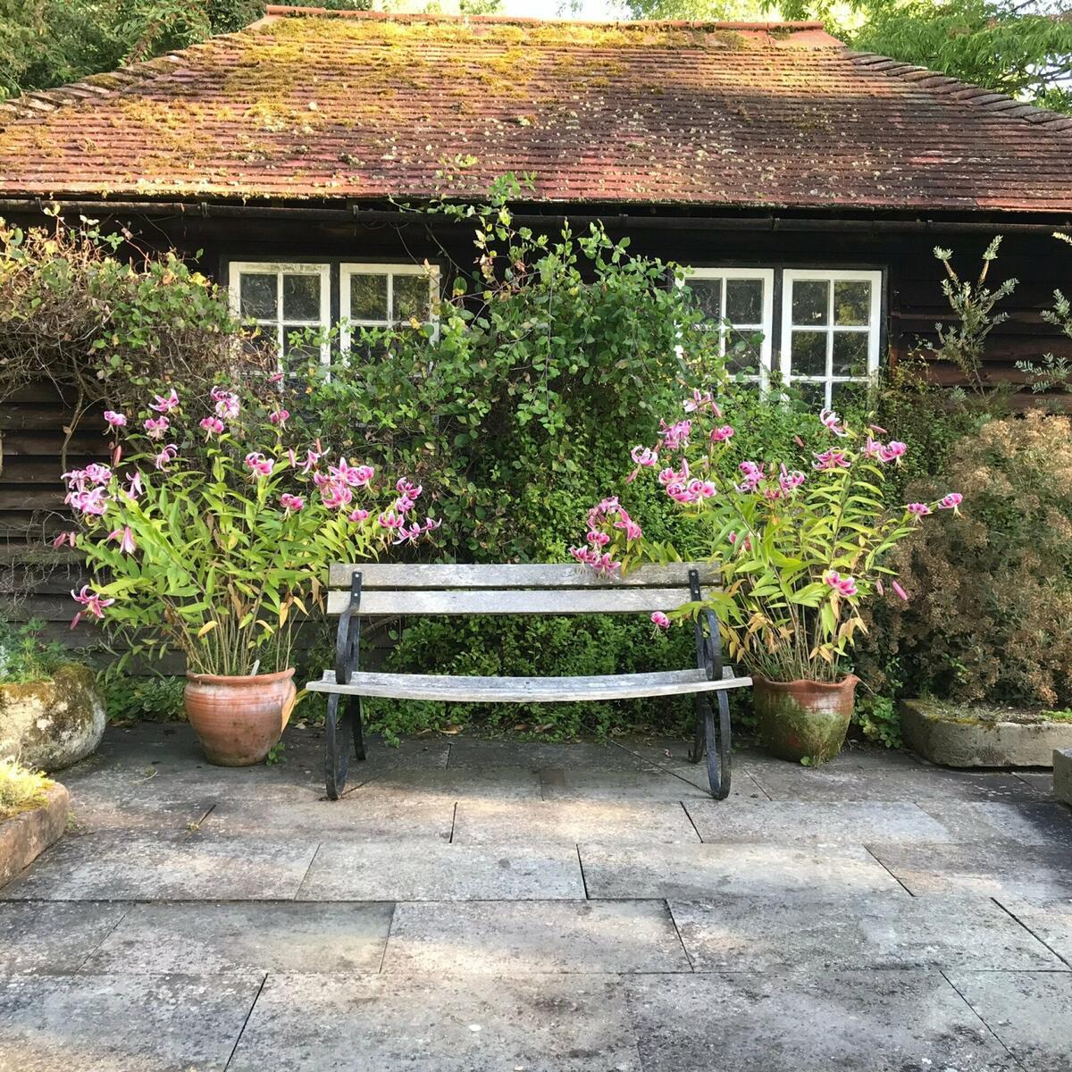 Peaceful corner by the old potting shed