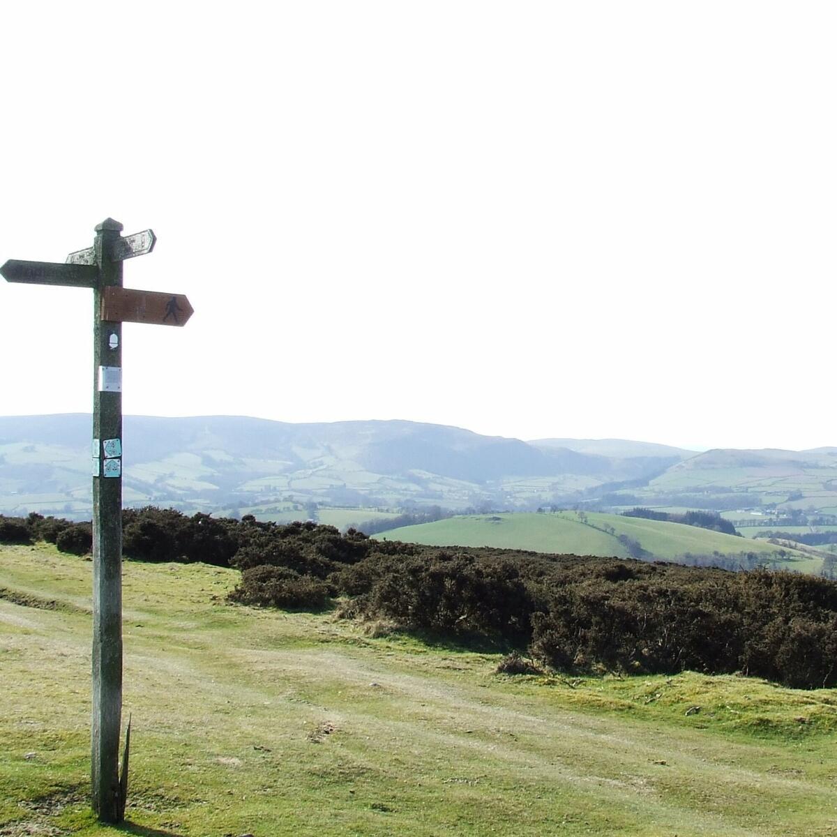 Offa's Dyke Path on Hergest Ridge