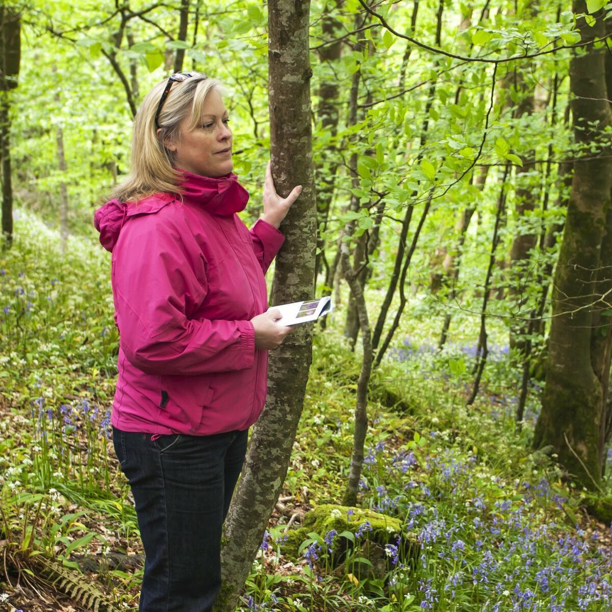 Woodland Wellbeing