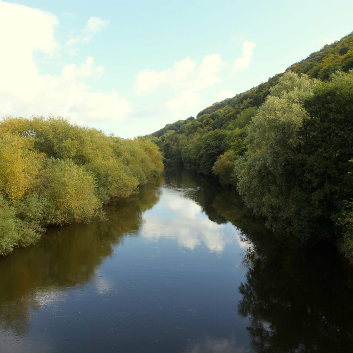 Canoe the Wye upstream from Kerne Bridge