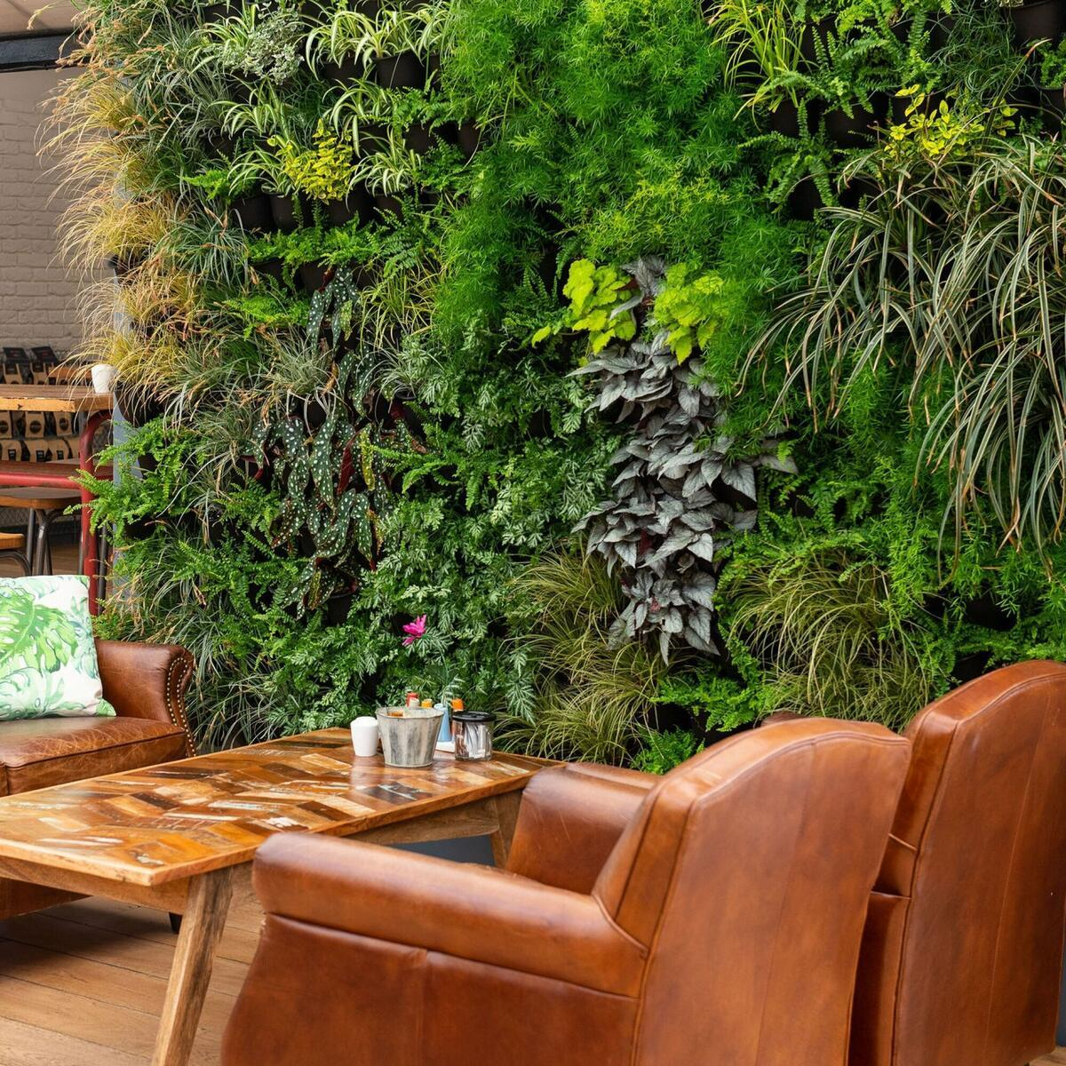 Living wall brings the outside in!