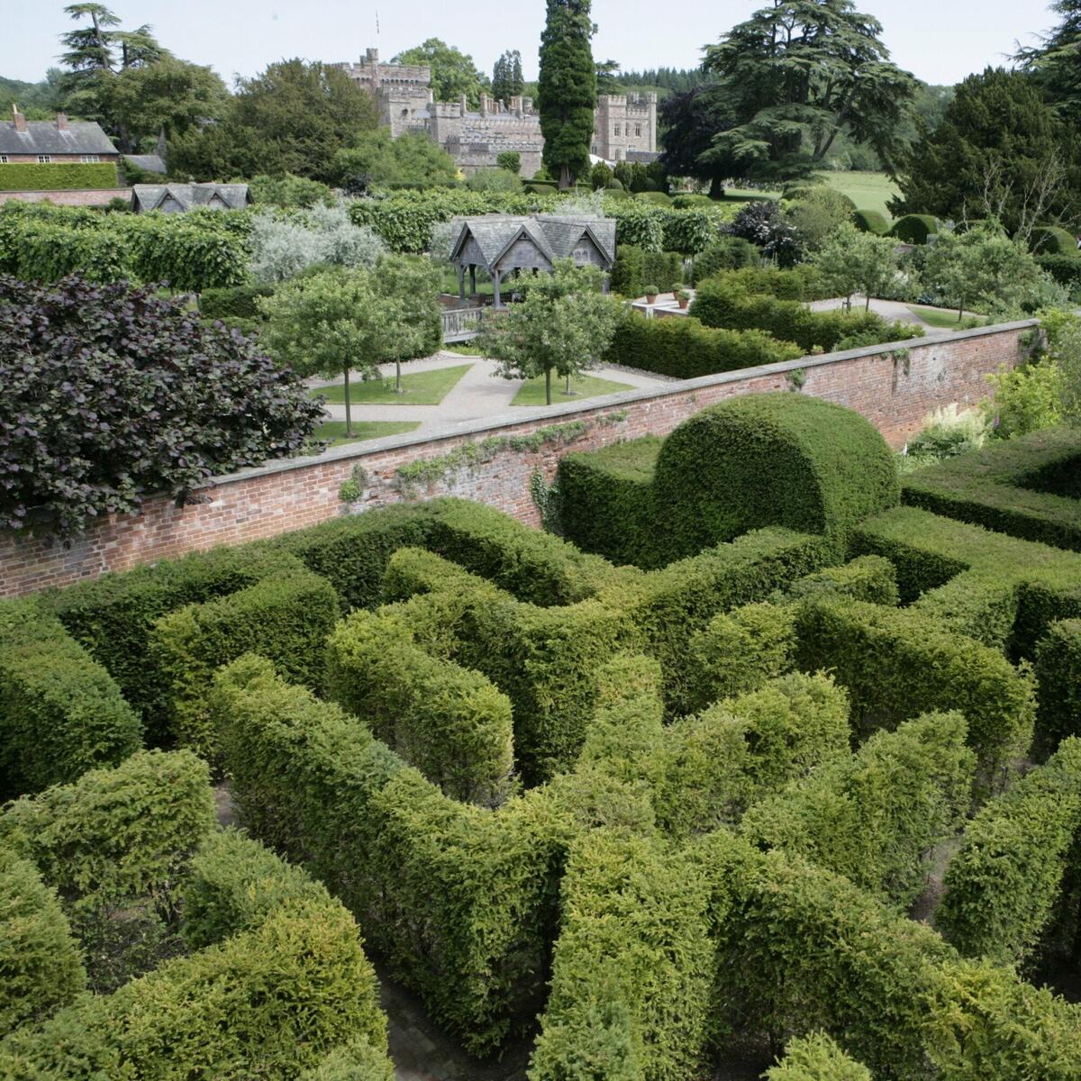 Yew Maze