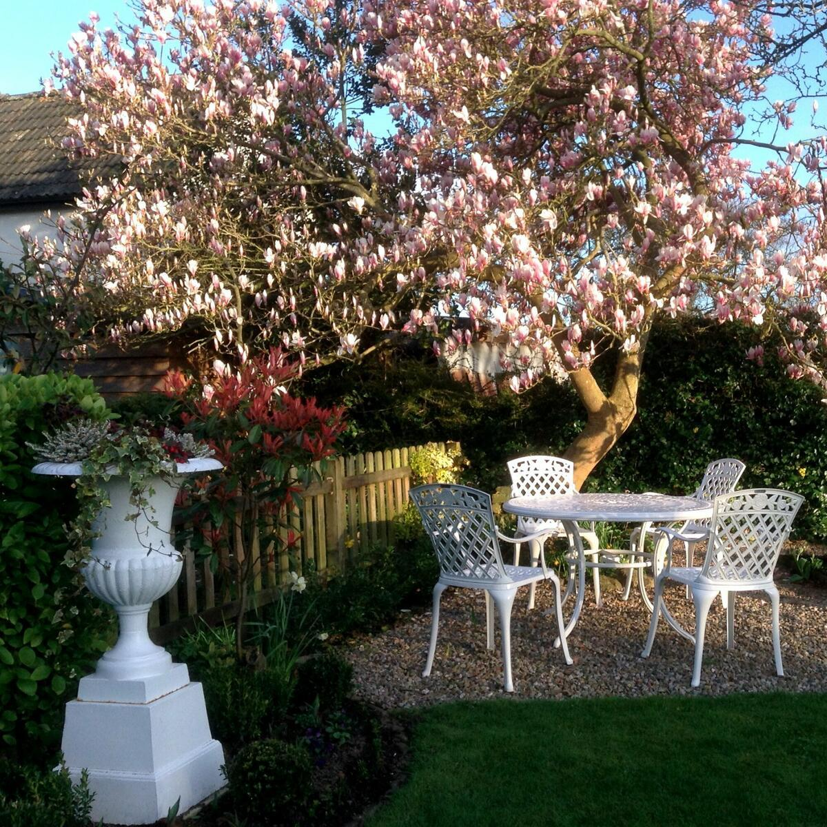 Guests are welcome to enjoy Arboyne House garden