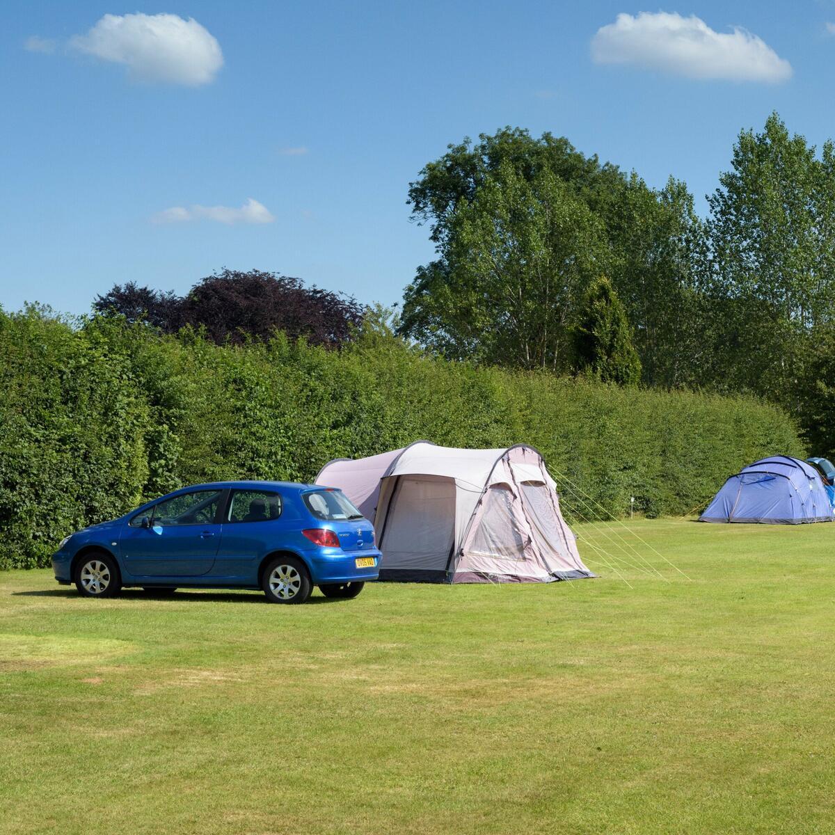 Spacious, level camping field at Arrow Bank