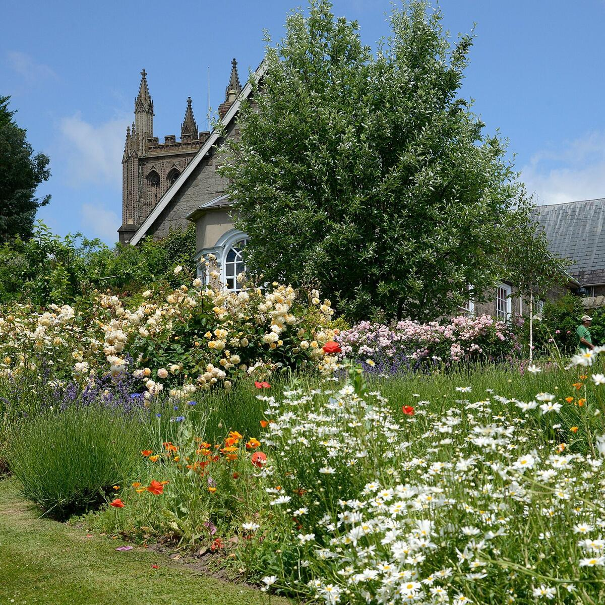 Gardens of Hereford Cathedral by Gordon Taylor
