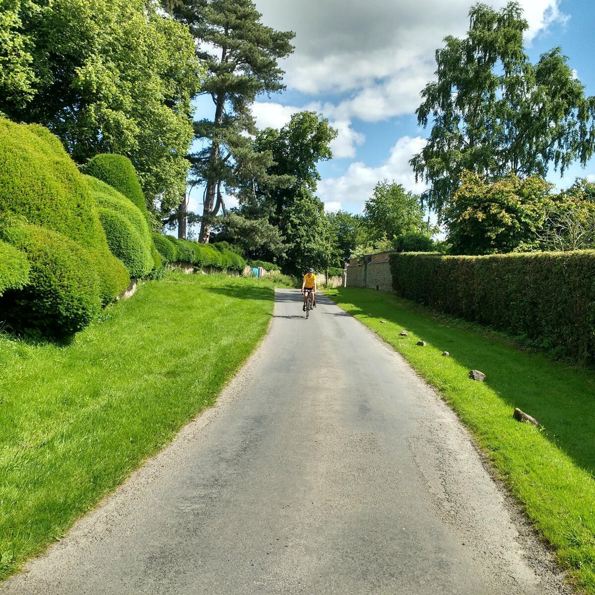 Cycle on quiet country lanes to a great teashop
