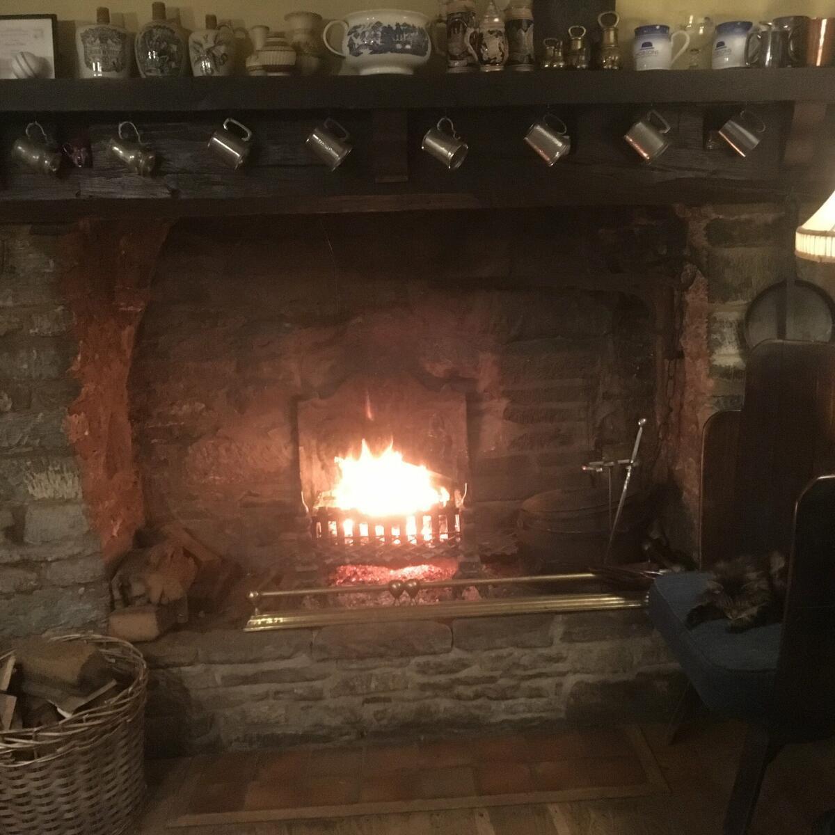 Pub cat Mel loves an open fire!