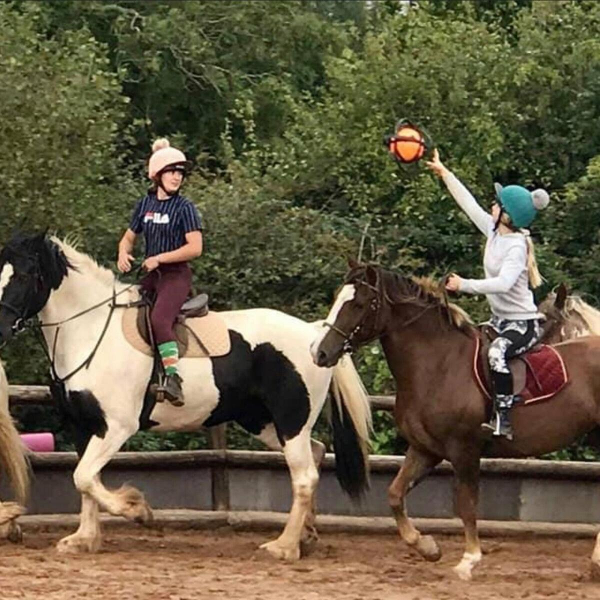 Fun and games horse ball