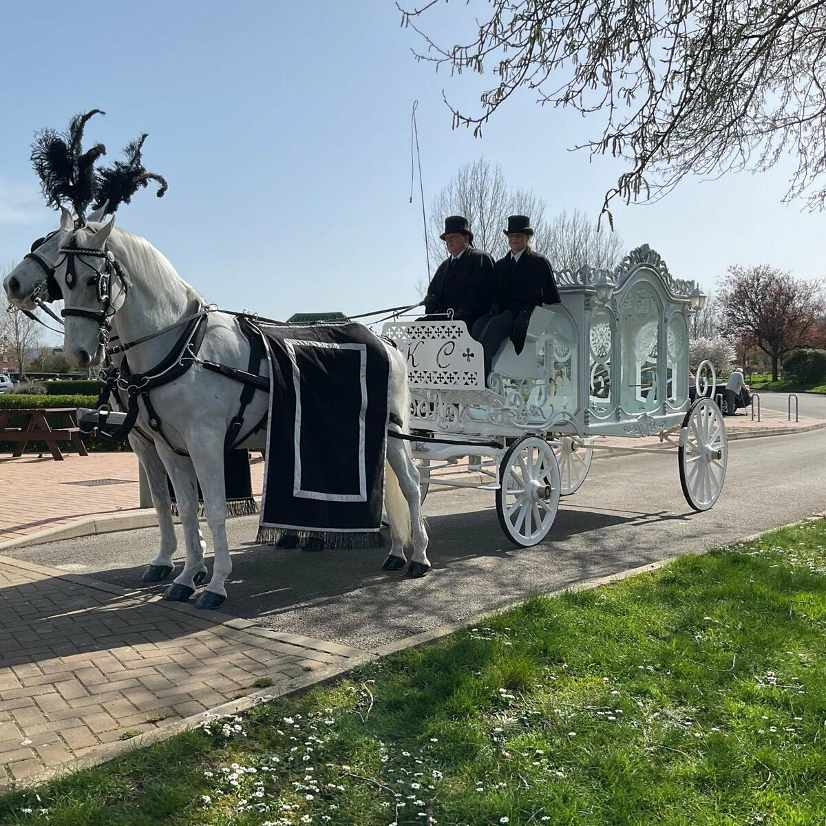 Horse drawn carriages kc