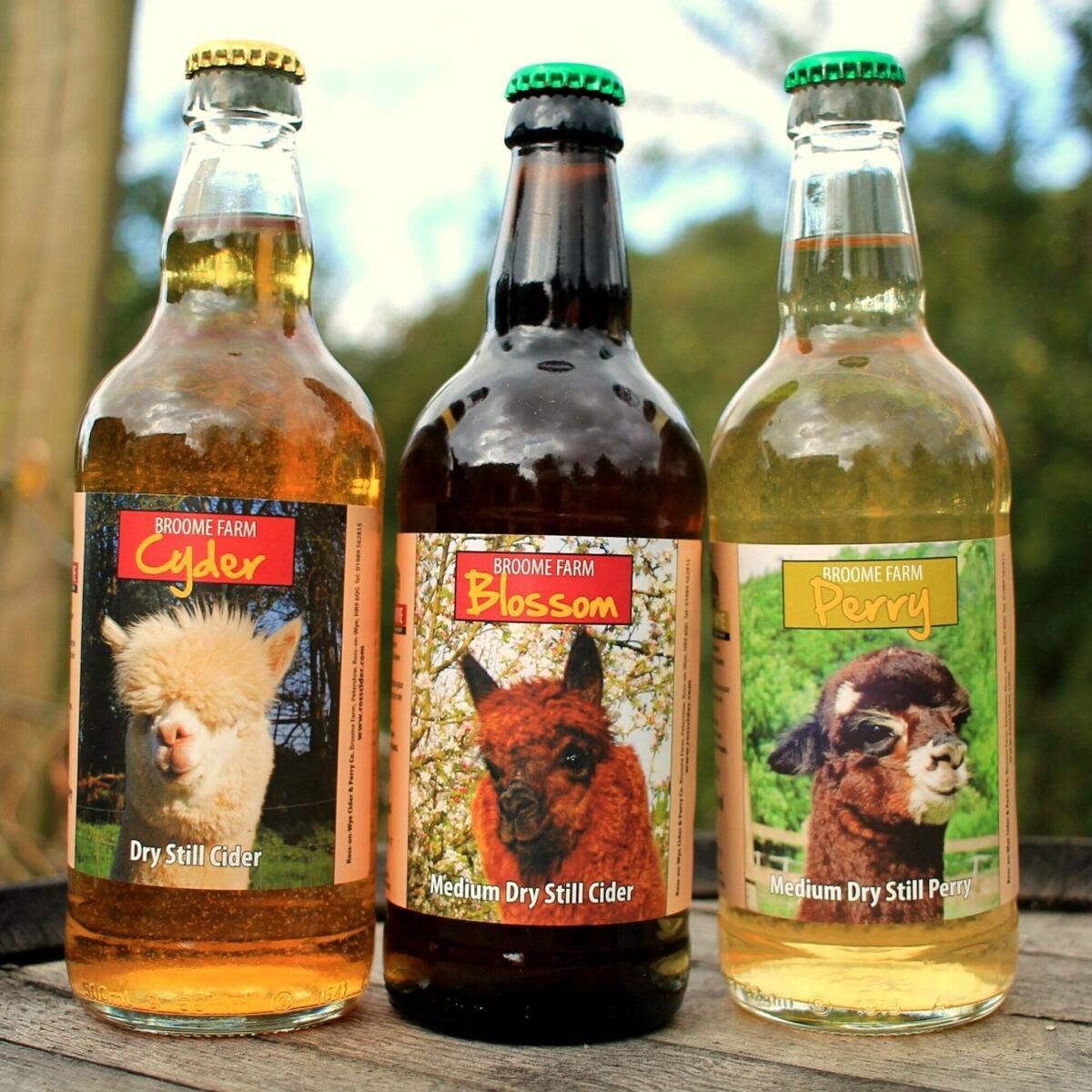 Our award winning Broome Farm cider