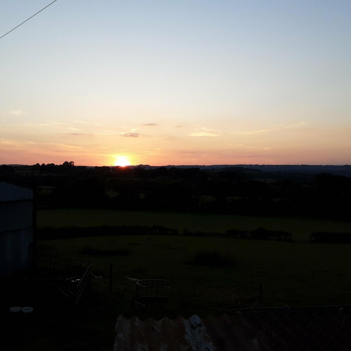 Sunny sunsets.
