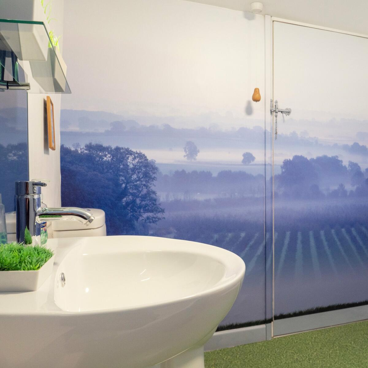 (downstairs) bathroom, showing the wall mural