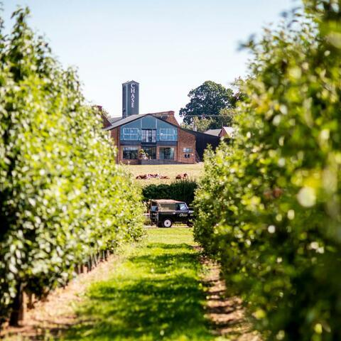 A view of Chase distillery from the orchards